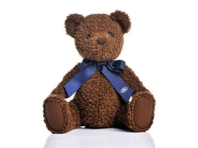 d37a3-genuine-land-rover-teddy-bear-30cm